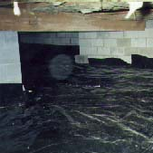 This picture shows a crawl space under a house with the plastic sheeting installed. This area is now ready for Radon extraction.